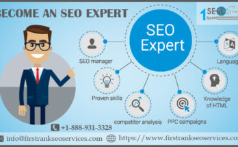 become an SEO expert