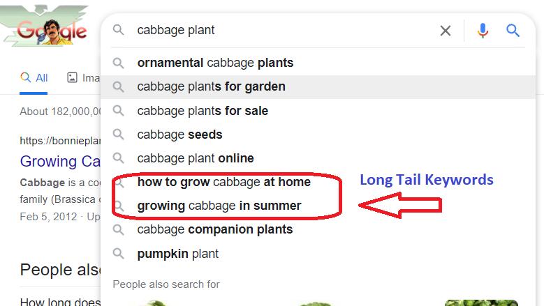 identify Long tail keywords